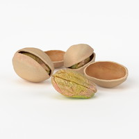 3d model of realistic pistachios real