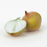 3d realistic onion real vegetables