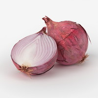 realistic onion real 3d obj
