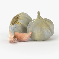 3d realistic garlic real vegetables model