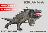 Iguana animated