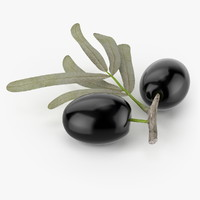 realistic olives real 3d model
