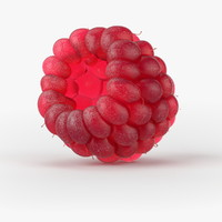 3d model realistic raspberry real