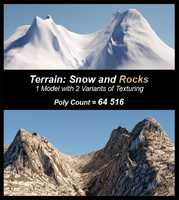 terrain model: snow rocks 3d model