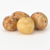 realistic potato real vegetables 3d model
