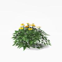 3d model flower bush