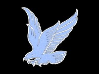 3d model nice hawk logo
