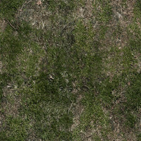 ground with grass 1