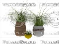 3d grass vase