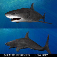 shark great white 3d obj