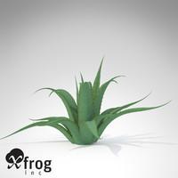 xfrogplants century plant 3ds
