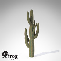 XfrogPlants Giant Saguaro