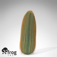 3d max xfrogplants barrel cactus plant