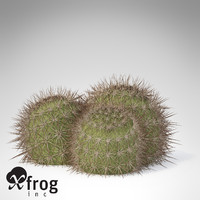 XfrogPlants Strawberry Hedgehog
