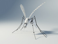 3d mosquito robot