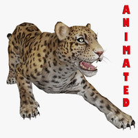 maya cheetah animal rigged