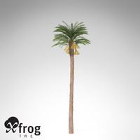 3ds max xfrogplants date palm