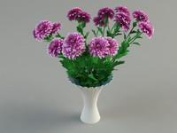 3d model of chrysanthemum flower