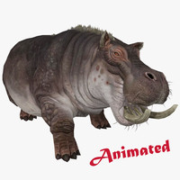 3d model of hippopotamus animal rigged