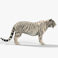 3d max white tiger fur