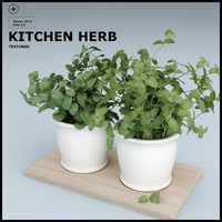 KITCHEN HERB