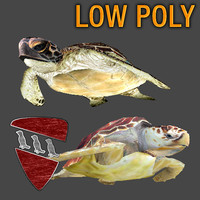 3d sea turtles pack model