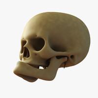 man skull old 3d model