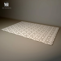 carpet rug company 3d model