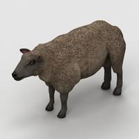 3ds max lamb sheep