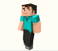 3d advanced steve rig model