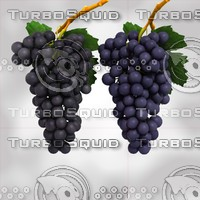Grapes Black & Blue