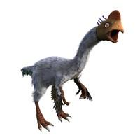 gigantoraptor 3d max