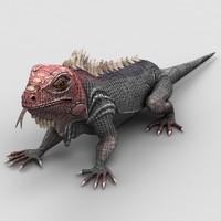 iguana lizard max