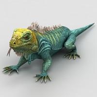 max iguana lizard