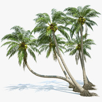 3ds max coconut palms set