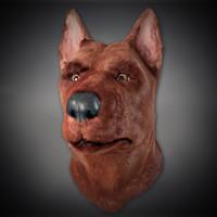 3d dog head model