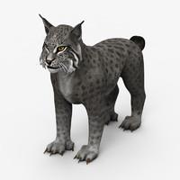 lynx 3d max