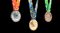 2014 Asian Games Incheon Official Medal