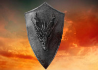 dragon shield 3d model