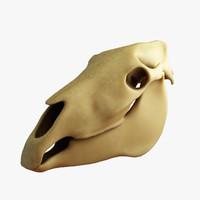 horse skull 3d 3ds