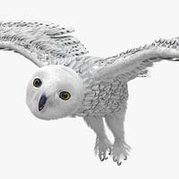 maya snowy owl rigged