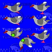 muscovy duck game target