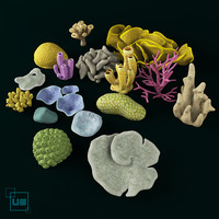 3ds max fish coral