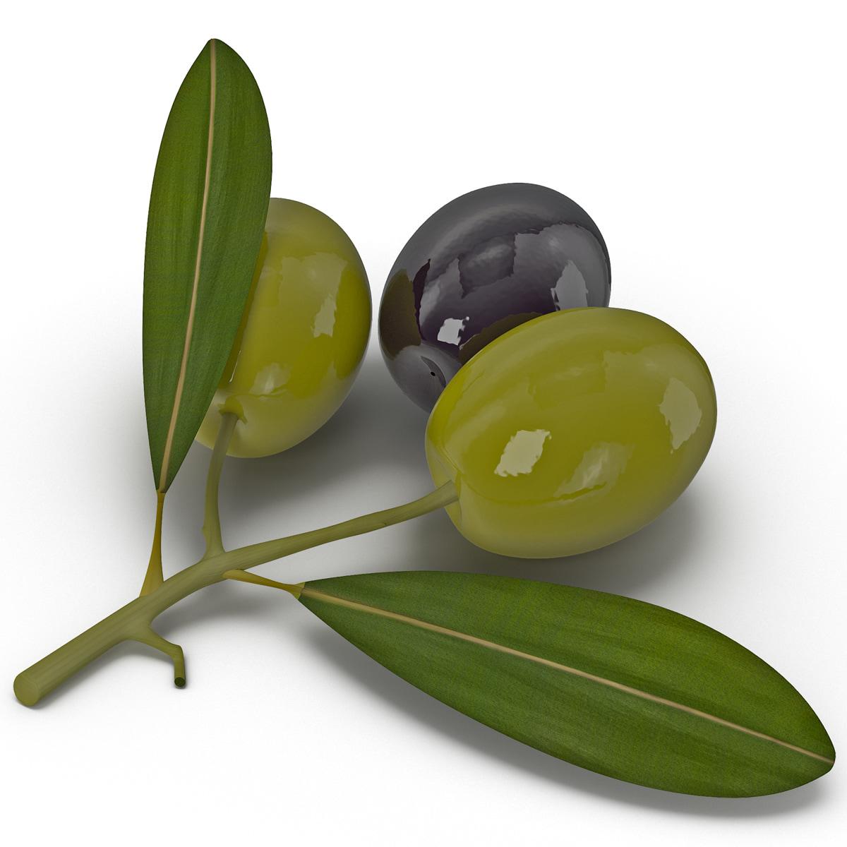 Olives_001.jpg