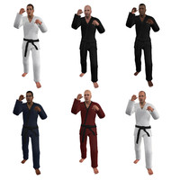 pack rigged martial artist fbx
