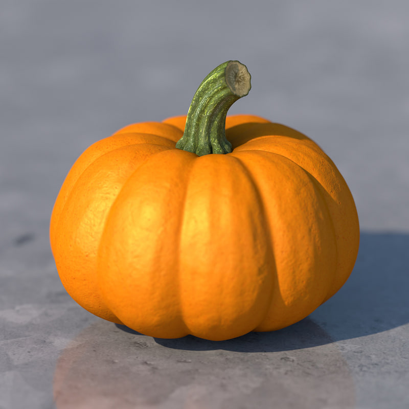 pumpkin-01.jpg