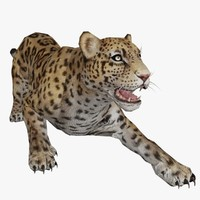 cheetah animal rigged 3d max