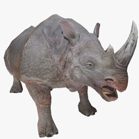 3ds max rhino animal