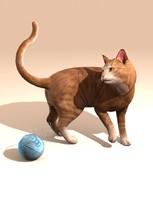 3d model cat