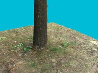 tree trunk 2 3d 3ds
